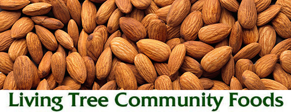 Almond Newsletter Header