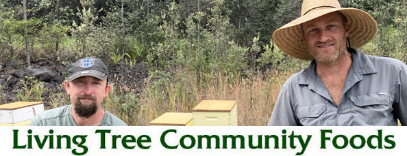 Hawaiian Beekeepers Newsletter Header