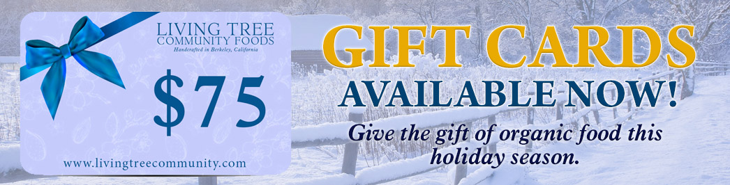Gift Card Winter Promo Banner