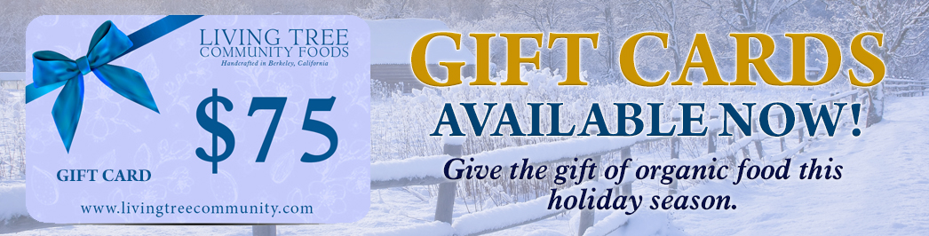 Gift Card Winter Promo Banner 2