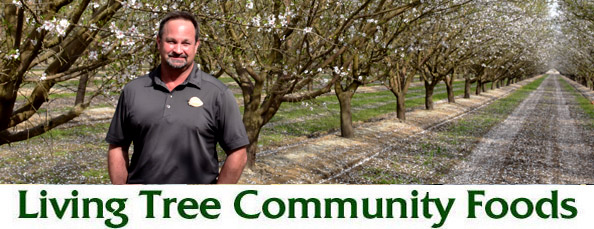 Steve Koretoff Almond Field Newsletter Header